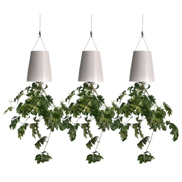 Super Pots de fleurs renversés pour votre jardin d'intérieur - Décoration US56