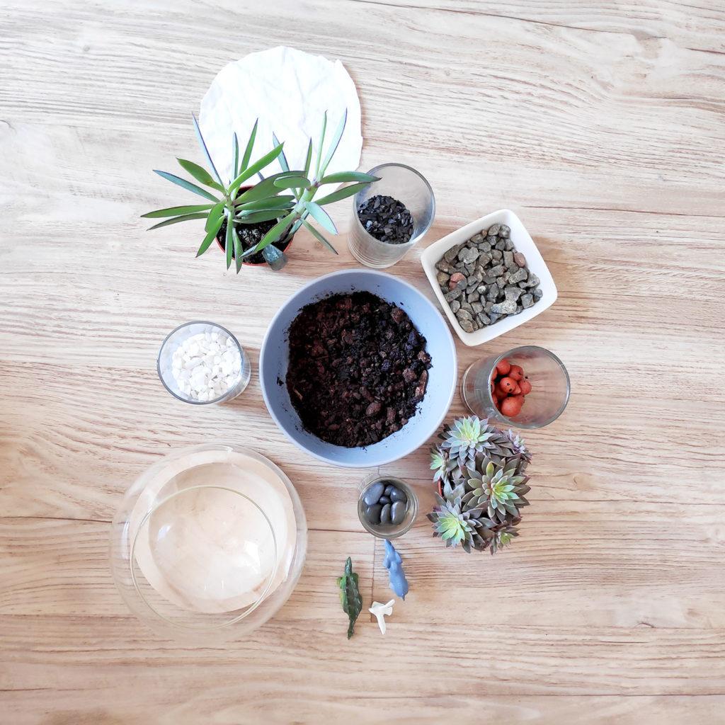 matériel pour créer son terrarium