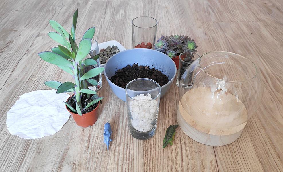 elements pour créer un terrarium